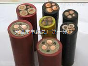 YJV3*16+2*10电力电缆