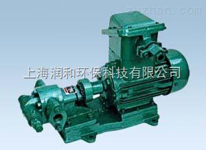 上海潤和齒輪油泵