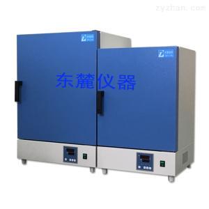 DGG-9036A河南热销设备立式鼓风干燥箱