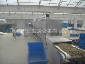 LQ-20山東微波中藥材殺菌設備