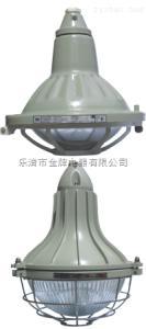 BAD-DIPBAD-DIP粉塵防爆燈(粉塵防爆燈)BAD-DIP【溫州】
