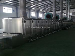 DWT脱水蔬菜带式干燥机