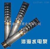 不銹鋼304,不銹鋼316,錫青銅海水潛水泵