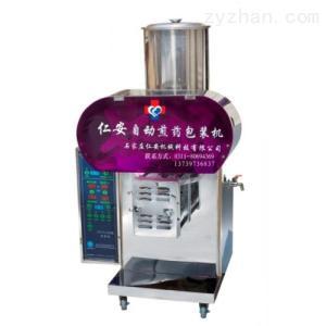 全自動不銹鋼變量煎藥機(RA-BXG70-300A)