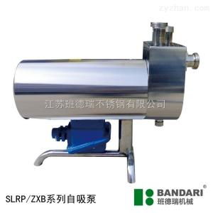 SLRP自吸泵