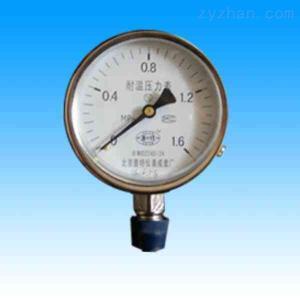 YTH耐高溫壓力表