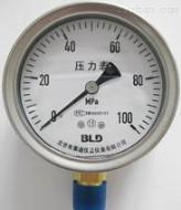 不锈钢隔膜耐震压力表