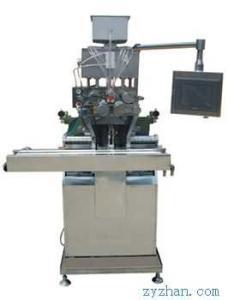 RJWJ115A/B、185A/B、300A/B軟膠囊生產線