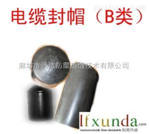 北京天津河北省供应热缩电缆封帽