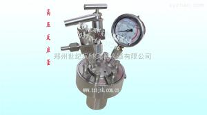 简易型高压反应釜