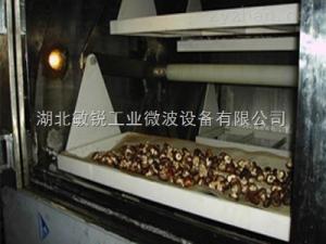 隧道式香菇木耳微波灭菌机