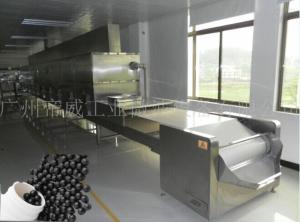 DWIM-30MT中药丸连续干燥设备 丸剂干燥杀菌设备