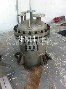 催化劑加氫反應過濾器