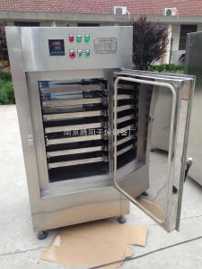 DMH-2藥廠專用干熱百級層流滅菌柜