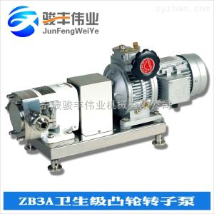 ZB3A變頻調速型轉子泵