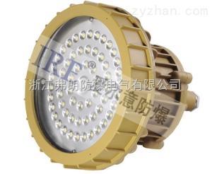 BRE8620(30W-80W)LED防爆燈BRE8620(30W-80W)