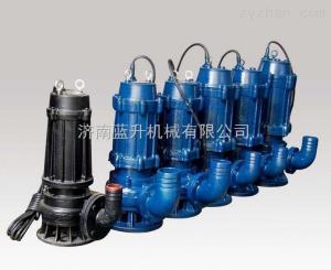 莱芜无堵塞自吸排污泵|莱芜污水潜水泵|莱芜污水泵 卧式