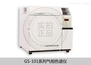 天然氣熱值分析儀氣相色譜儀GS-101E