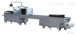 DPP140/250型平板式铝塑泡罩包装机