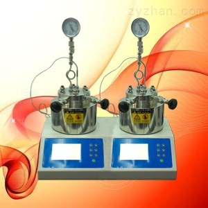 FYS-25高压双联反应釜