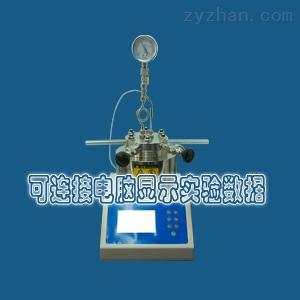 FY-10精锐磁力搅拌可控反应釜