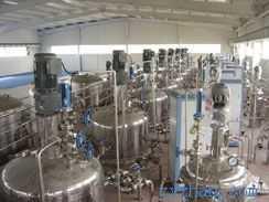 生產型發酵罐