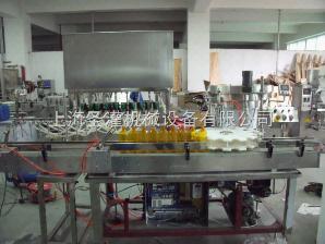 SGG100/500供应SGGN-100/500型全自动消毒液灌装机