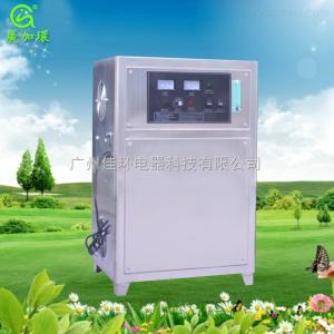 YT-015-10A供應礦泉水純凈水山泉水消毒機10G小型氧氣源臭氧發生器