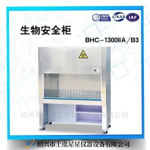 BHC-1300IIA/B3生物安全柜全排带注册证