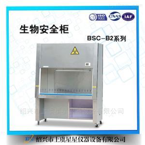 BSC-1300IIB2单人二级生物安全柜全排