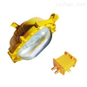 BFE812035W内场防爆应急照明   应急照明灯具销售价格