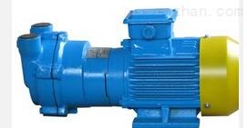 供應里其樂VC303真空泵過濾器濾芯