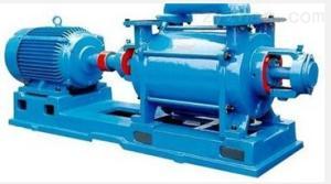 DLSZ-I低溫冷卻循環水真空泵