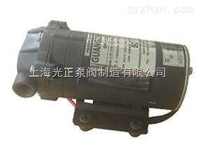 DP-125型微型隔膜泵
