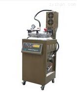 BJY150-2常壓煎藥包裝一體機、福州煎藥機、煎藥包裝一體機
