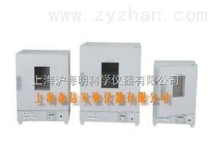 DGG-9140BD不銹鋼恒溫干燥箱/電熱恒溫鼓風干燥箱