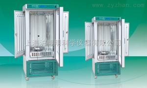 RGX250人工氣候箱/250L不銹鋼人工氣候箱