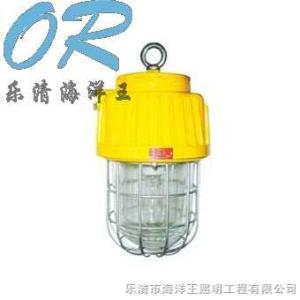 DGS70-127B(B)DGS70-127B(B)礦用隔爆型泛光燈 樂清海洋王