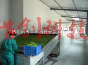 5JDL400A豇豆烘干機價格
