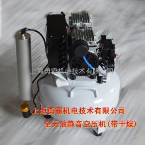 YB-W100Y勇霸全无油静音空压机带干燥空气压缩机