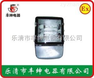 NFC9121ANFC9121A節能型廣場燈