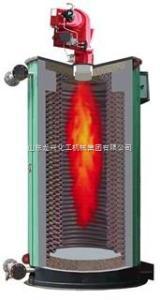 齊全山東龍興專制燃油燃氣鍋爐 品質高端 技術先進 值得信賴