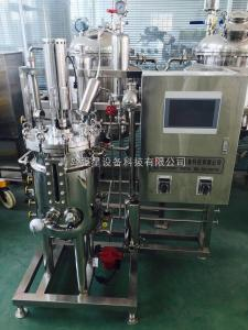 100L不锈钢发酵罐系统/发酵罐