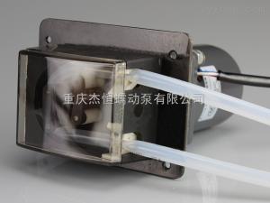 TH15/JL杰恒TH15/JL蠕動泵