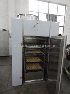 CT-C小型蔬菜烘干机 家用干香椿热风循环烘箱