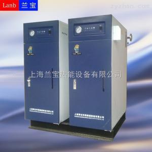 LDR0.034-0.7蒸汽清洗机配套电蒸汽发生器