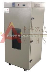 DHG-140A充氮烘箱/充氮烤箱/充氮恒温干燥箱