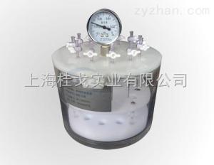 QSE系列固相萃取装置/固相萃取仪