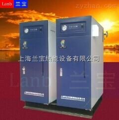 LDR0.1-0.7套標機包裝機械設備配套電鍋爐