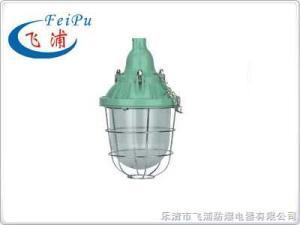 BAD52-100供應BAD52-100系列防爆燈
